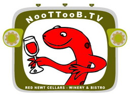 Noottoob_logo_256